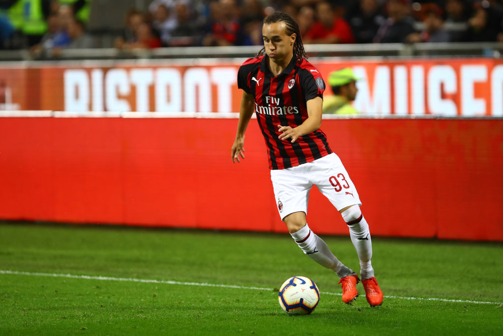 Image result for diego laxalt